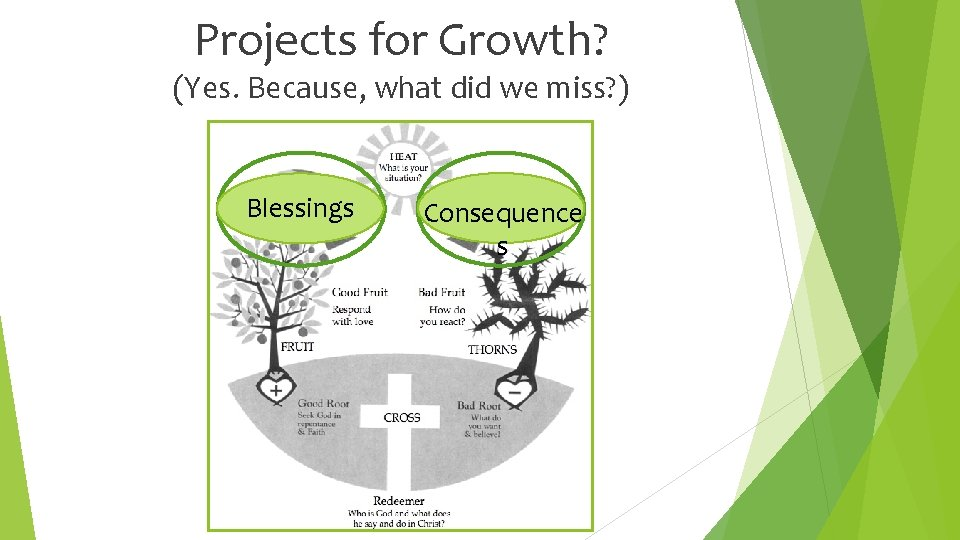 Projects for Growth? (Yes. Because, what did we miss? ) Blessings Consequence s