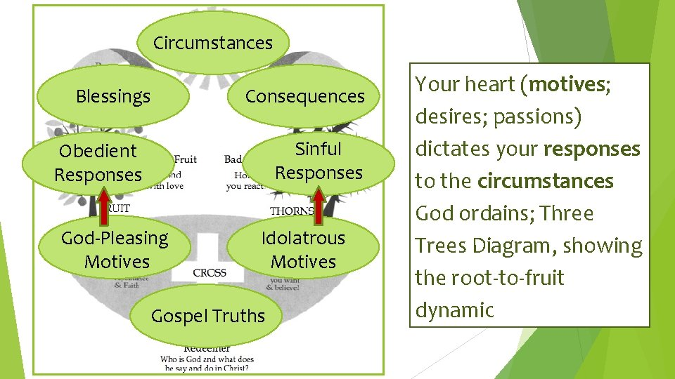 Circumstances Blessings Consequences Sinful Responses Obedient Responses God-Pleasing Motives Idolatrous Motives Gospel Truths Your