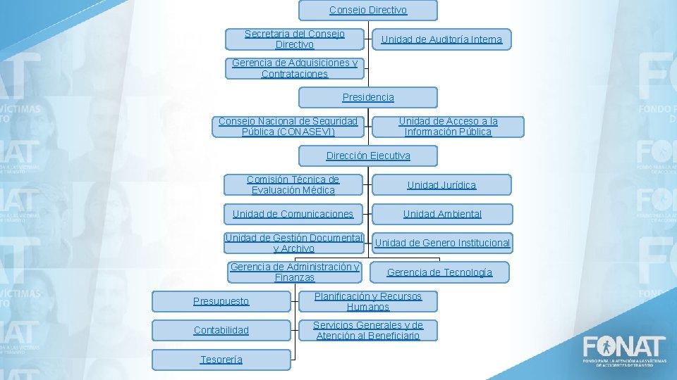 Consejo Directivo Secretaria del Consejo Directivo Unidad de Auditoría Interna Gerencia de Adquisiciones y