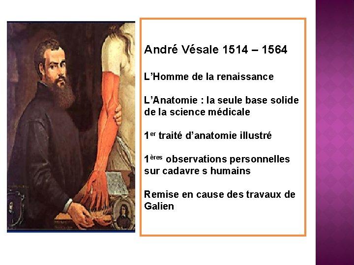 André Vésale 1514 – 1564 L'Homme de la renaissance L'Anatomie : la seule base