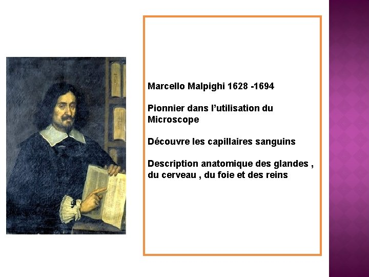 Marcello Malpighi 1628 -1694 Pionnier dans l'utilisation du Microscope Découvre les capillaires sanguins Description