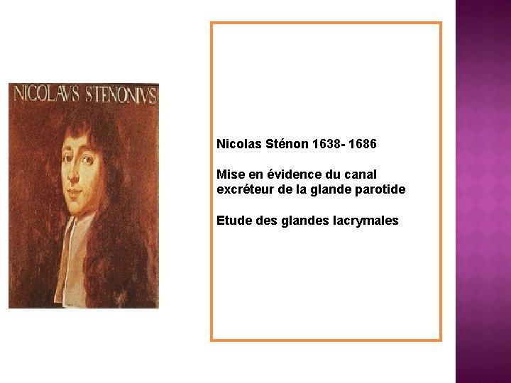 Nicolas Sténon 1638 - 1686 Mise en évidence du canal excréteur de la glande