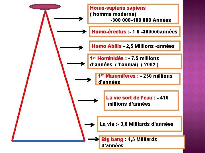Homo-sapiens ( homme moderne) -300 000 -100 000 Années Homo-érectus : - 1 6