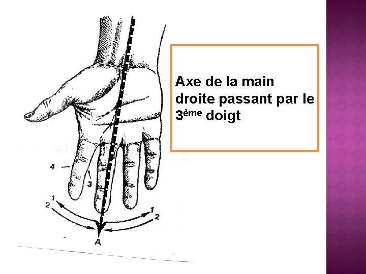 Axe de la main droite passant par le 3ème doigt