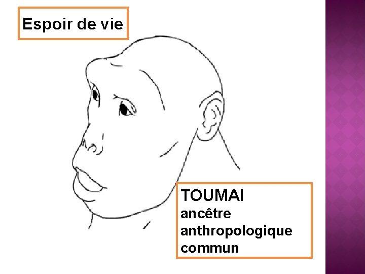 Espoir de vie TOUMAI ancêtre anthropologique commun