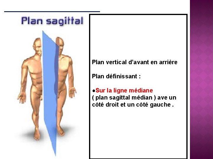 Plan vertical d'avant en arrière Plan définissant : ●Sur la ligne médiane ( plan