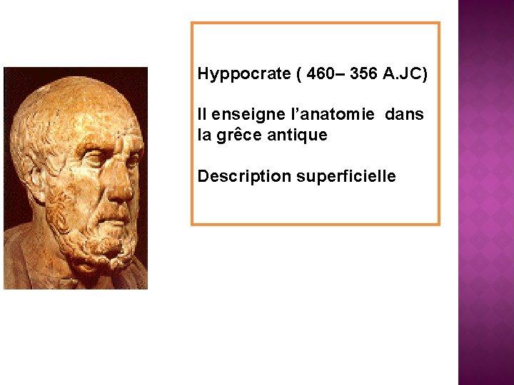 Hyppocrate ( 460– 356 A. JC) Il enseigne l'anatomie dans la grêce antique Description