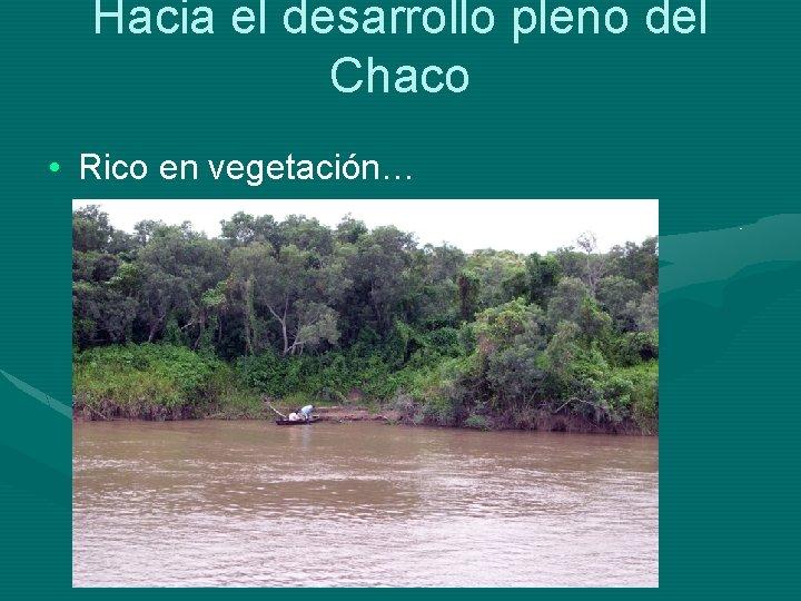 Hacia el desarrollo pleno del Chaco • Rico en vegetación…