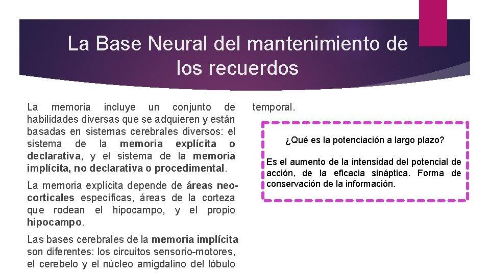 La Base Neural del mantenimiento de los recuerdos La memoria incluye un conjunto de