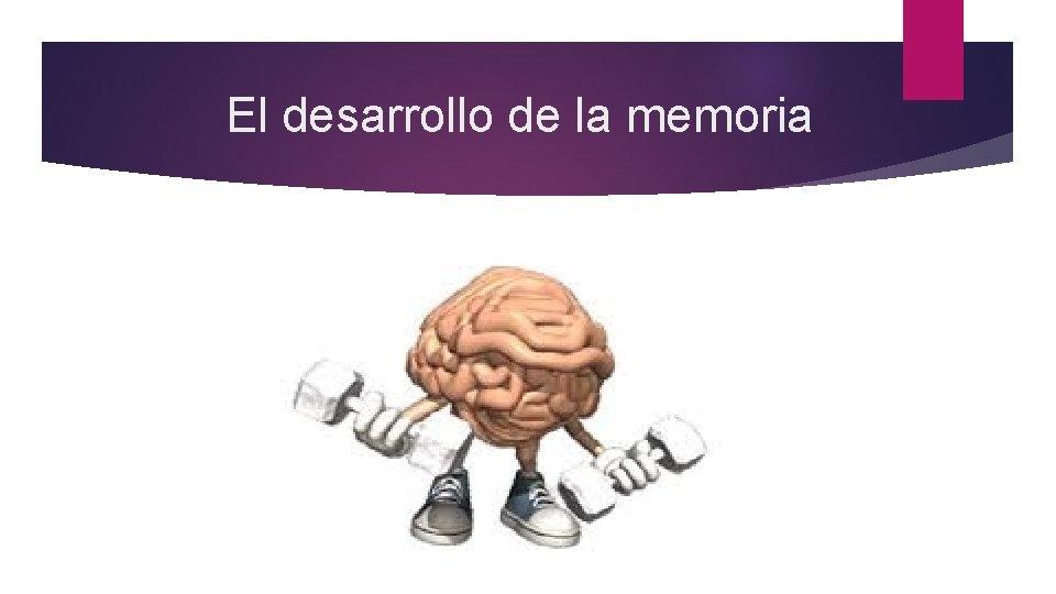 El desarrollo de la memoria