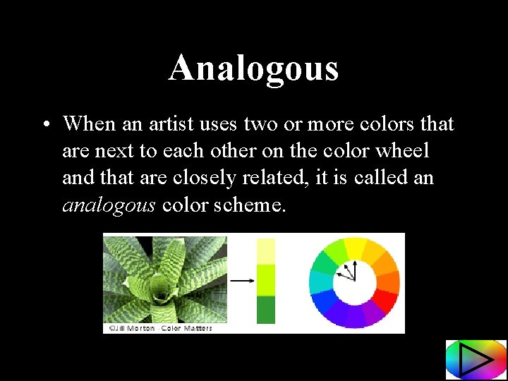 Analogous • When an artist uses two or more colors that are next to