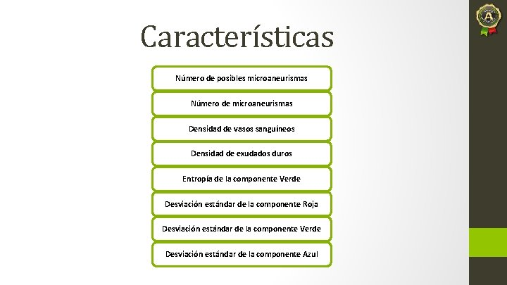 Características Número de posibles microaneurismas Número de microaneurismas Densidad de vasos sanguíneos Densidad de