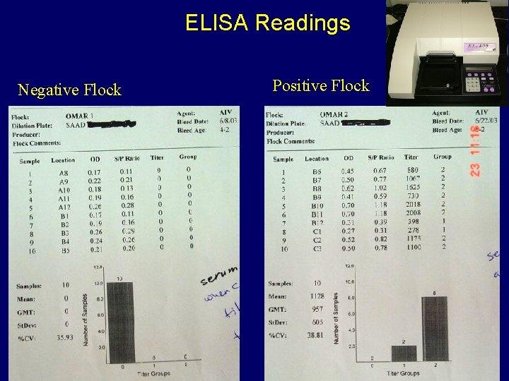 ELISA Readings Negative Flock Positive Flock