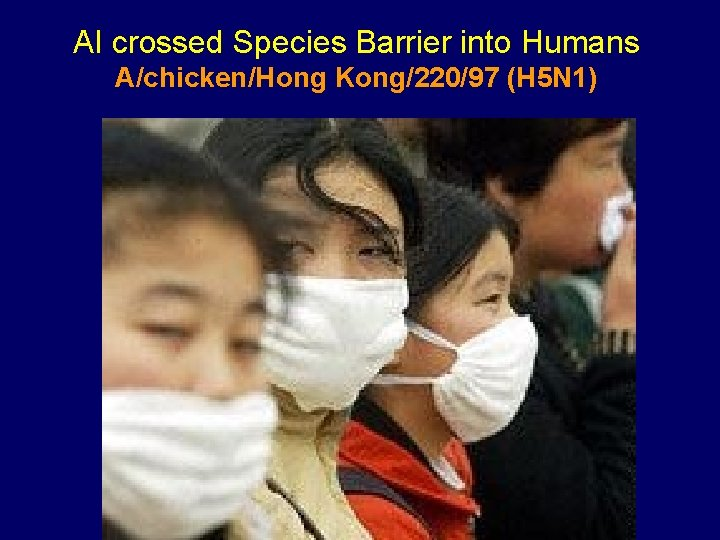 AI crossed Species Barrier into Humans A/chicken/Hong Kong/220/97 (H 5 N 1)