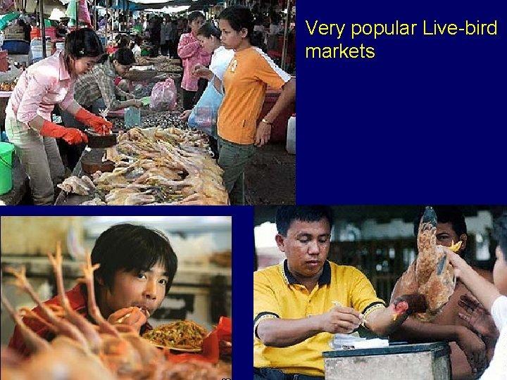 Very popular Live-bird markets