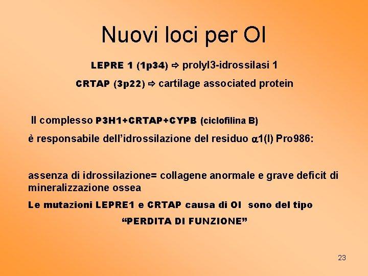 Nuovi loci per OI LEPRE 1 (1 p 34) prolyl 3 -idrossilasi 1 CRTAP