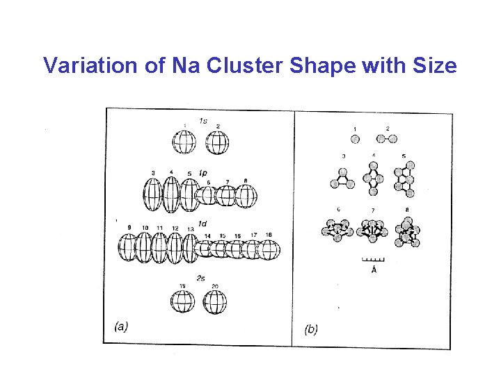 Variation of Na Cluster Shape with Size