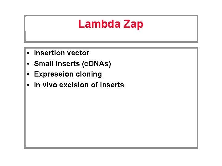 Lambda Zap • • Insertion vector Small inserts (c. DNAs) Expression cloning In vivo