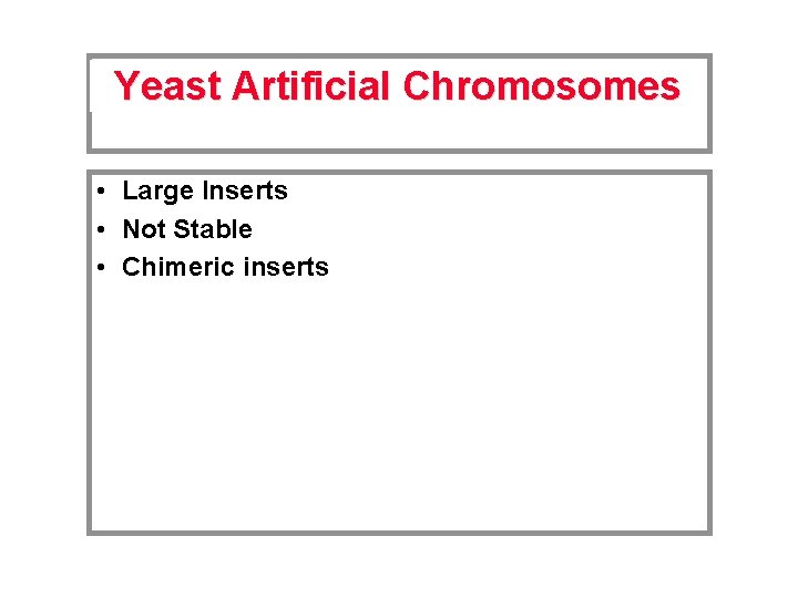 Yeast Artificial Chromosomes • Large Inserts • Not Stable • Chimeric inserts