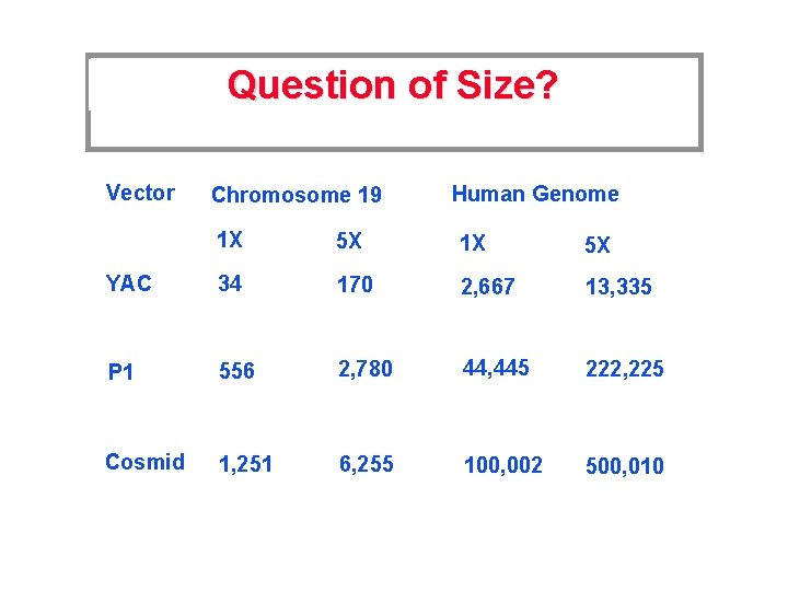 Question of Size? Vector Chromosome 19 Human Genome 1 X 5 X YAC 34