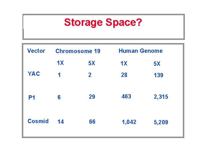 Storage Space? Vector Chromosome 19 Human Genome 1 X 5 X YAC 1 2