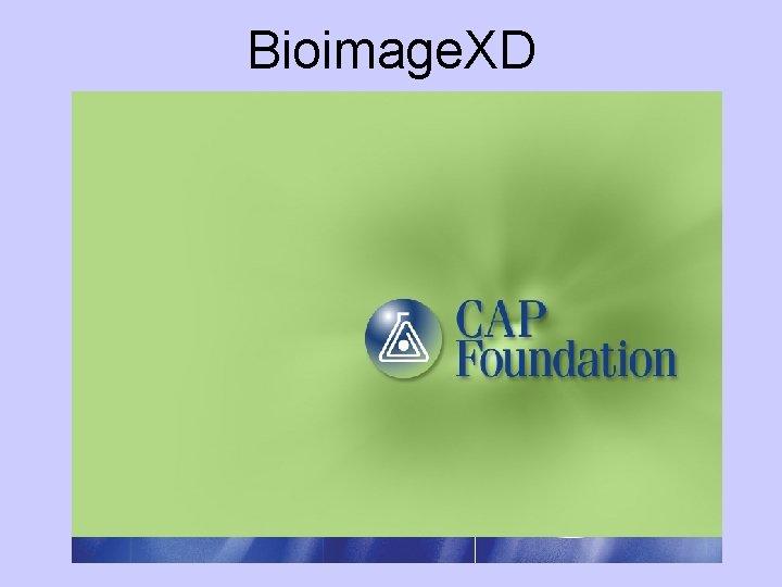 Bioimage. XD