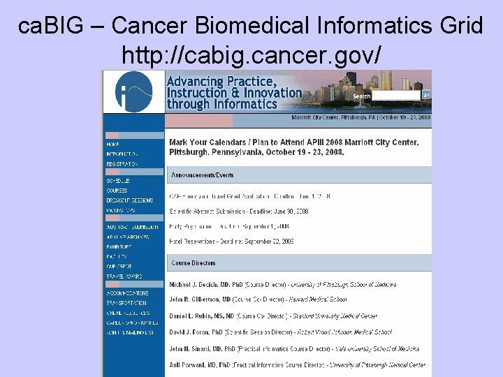 ca. BIG – Cancer Biomedical Informatics Grid http: //cabig. cancer. gov/