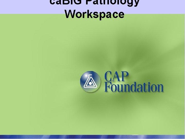 ca. BIG Pathology Workspace