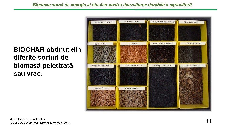 Biomasa sursă de energie şi biochar pentru dezvoltarea durabilă a agriculturii BIOCHAR obţinut din