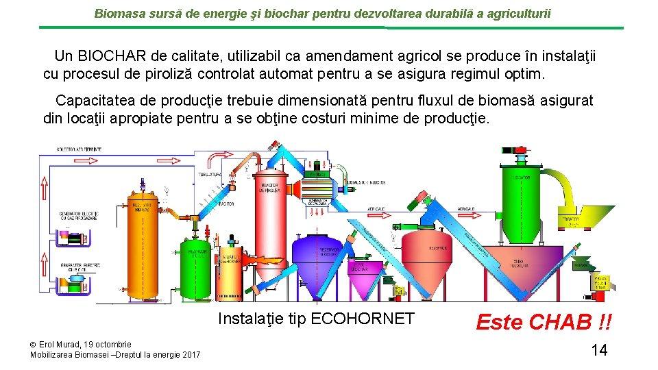 Biomasa sursă de energie şi biochar pentru dezvoltarea durabilă a agriculturii Un BIOCHAR de