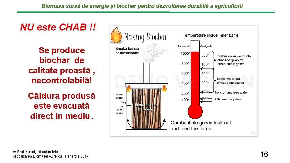 Biomasa sursă de energie şi biochar pentru dezvoltarea durabilă a agriculturii NU este CHAB