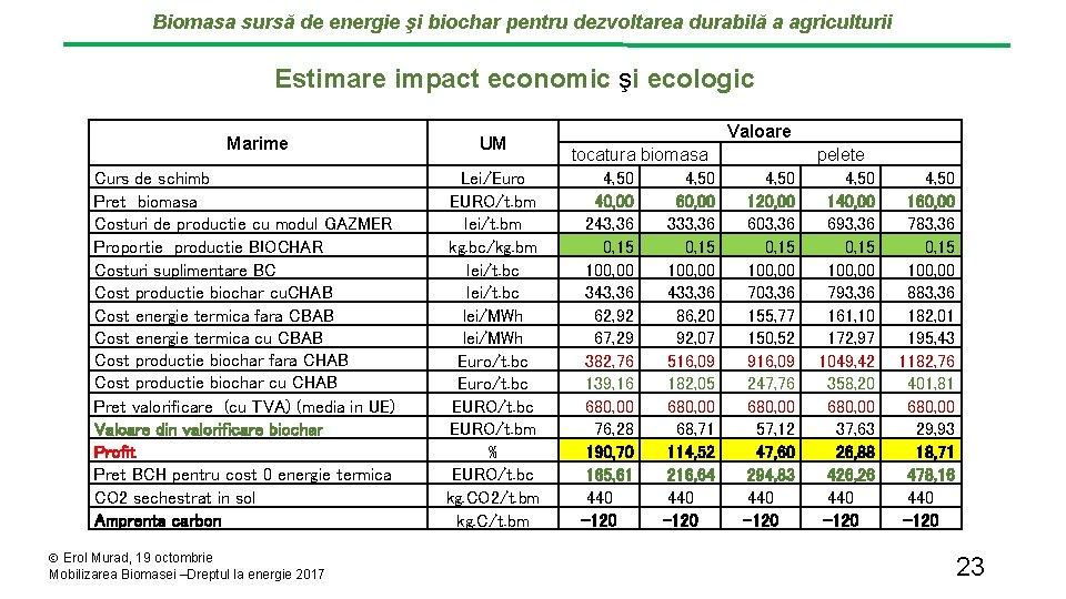 Biomasa sursă de energie şi biochar pentru dezvoltarea durabilă a agriculturii Estimare impact economic