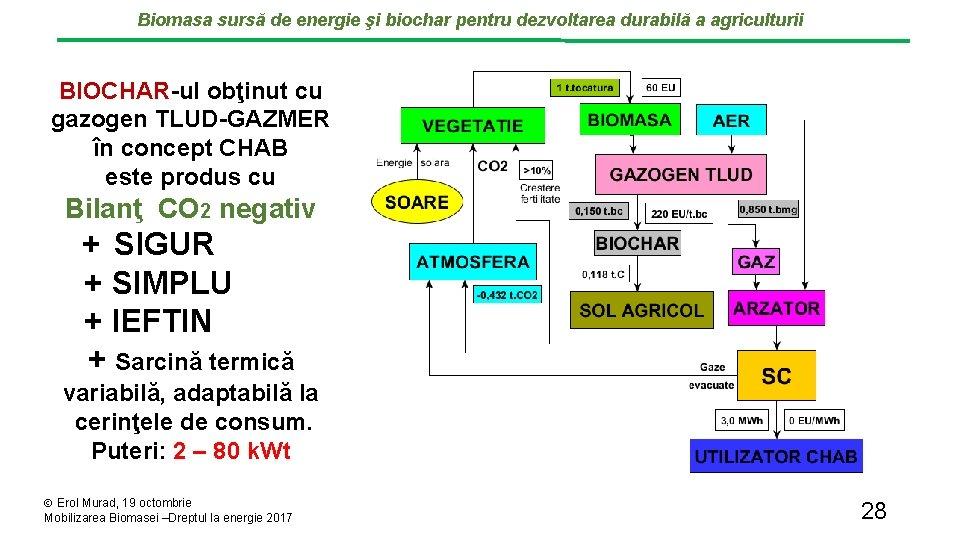 Biomasa sursă de energie şi biochar pentru dezvoltarea durabilă a agriculturii BIOCHAR-ul obţinut cu
