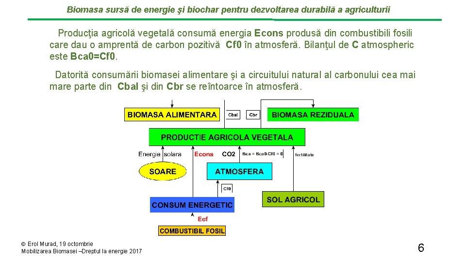 Biomasa sursă de energie şi biochar pentru dezvoltarea durabilă a agriculturii Producţia agricolă vegetală