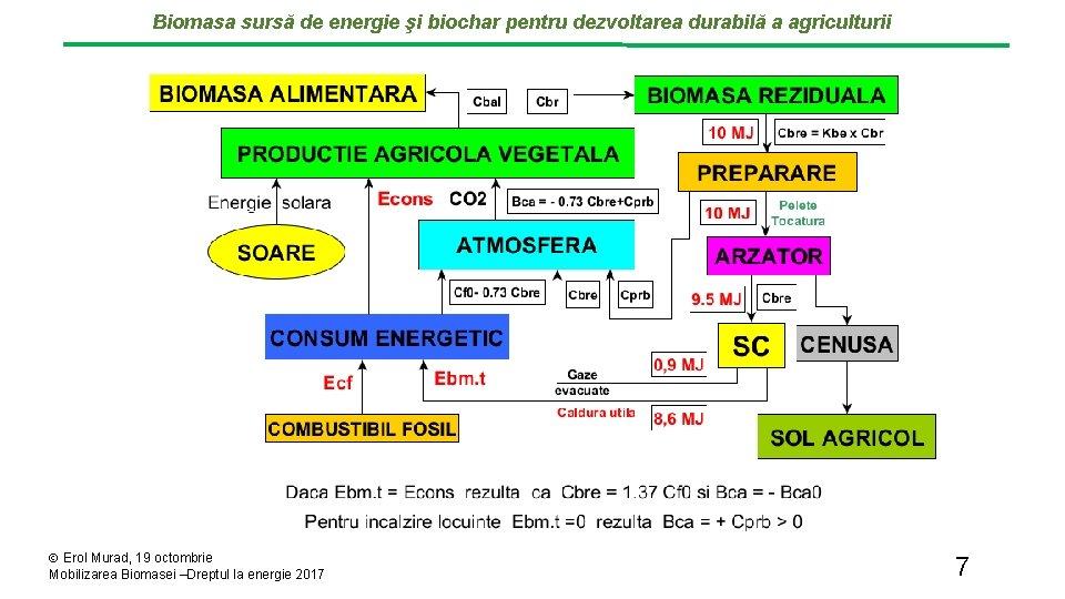 Biomasa sursă de energie şi biochar pentru dezvoltarea durabilă a agriculturii Erol Murad, 19