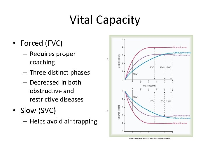Vital Capacity • Forced (FVC) – Requires proper coaching – Three distinct phases –