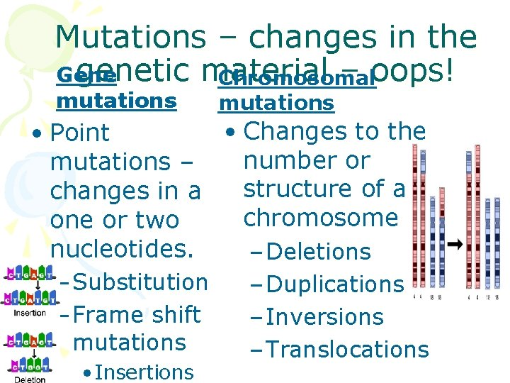 Mutations – changes in the genetic material – oops! Gene Chromosomal mutations • Changes