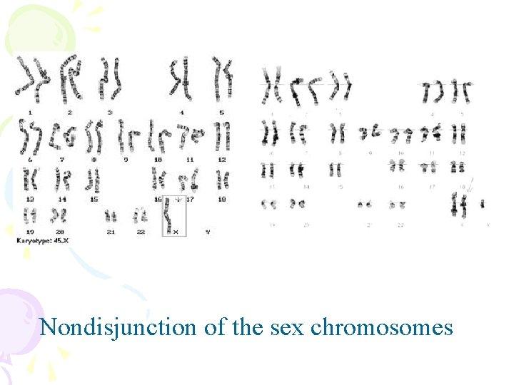 Nondisjunction of the sex chromosomes
