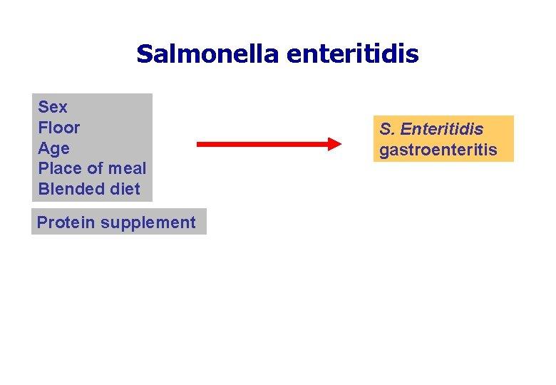 Salmonella enteritidis Sex Floor Age Place of meal Blended diet Protein supplement S. Enteritidis