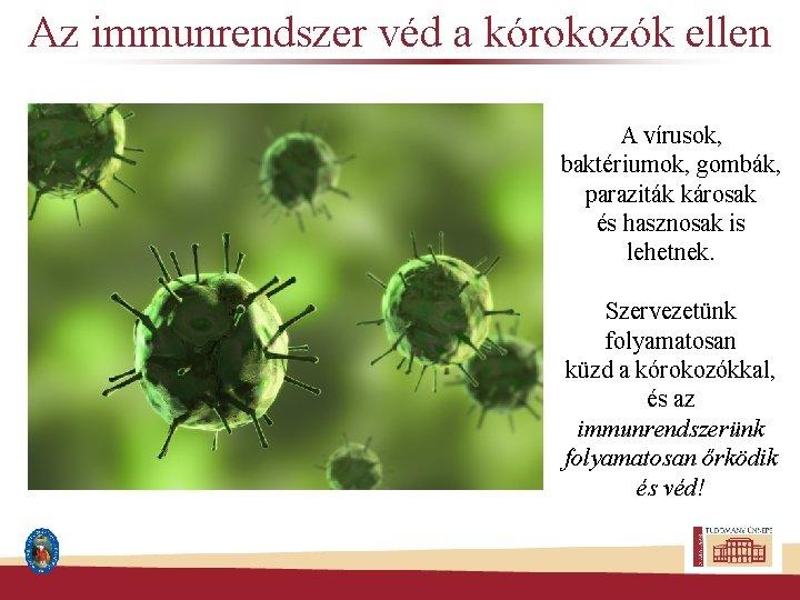 a diftéria kórokozója parazita)