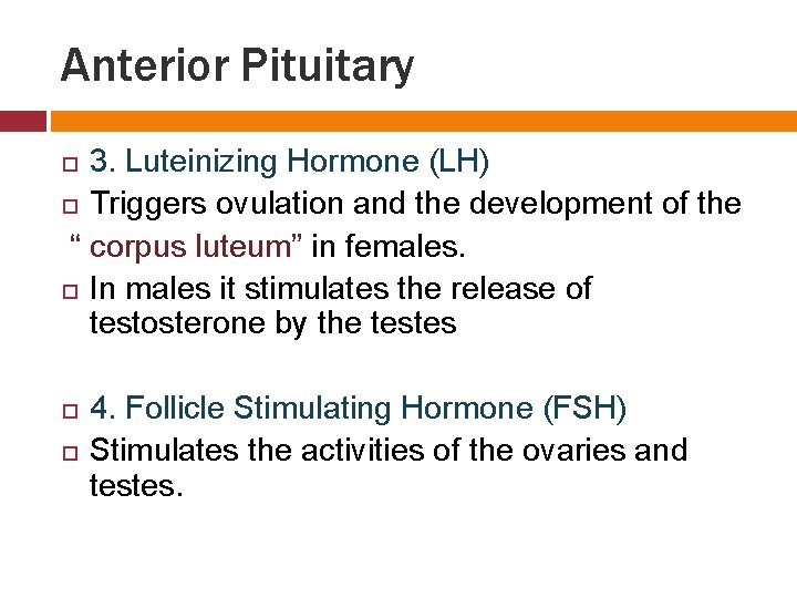 """Anterior Pituitary 3. Luteinizing Hormone (LH) Triggers ovulation and the development of the """""""