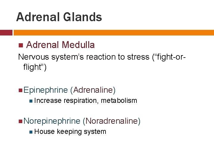 "Adrenal Glands Adrenal Medulla Nervous system's reaction to stress (""fight-orflight"") Epinephrine (Adrenaline) Increase respiration,"