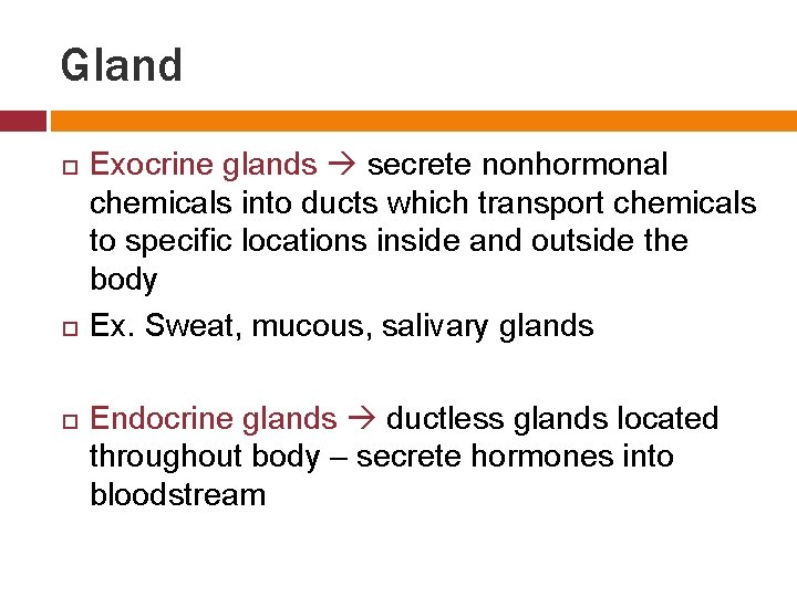 Gland Exocrine glands secrete nonhormonal chemicals into ducts which transport chemicals to specific locations