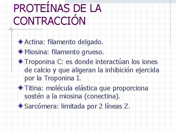 PROTEÍNAS DE LA CONTRACCIÓN Actina: filamento delgado. Miosina: filamento grueso. Troponina C: es donde