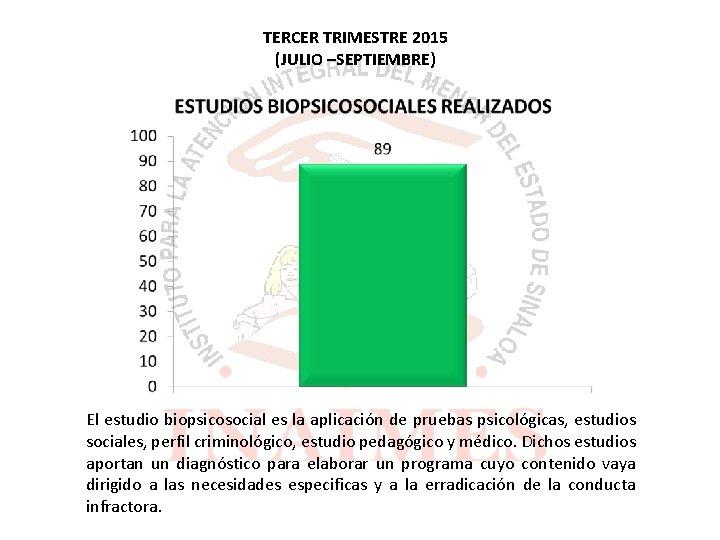 TERCER TRIMESTRE 2015 (JULIO –SEPTIEMBRE) El estudio biopsicosocial es la aplicación de pruebas psicológicas,