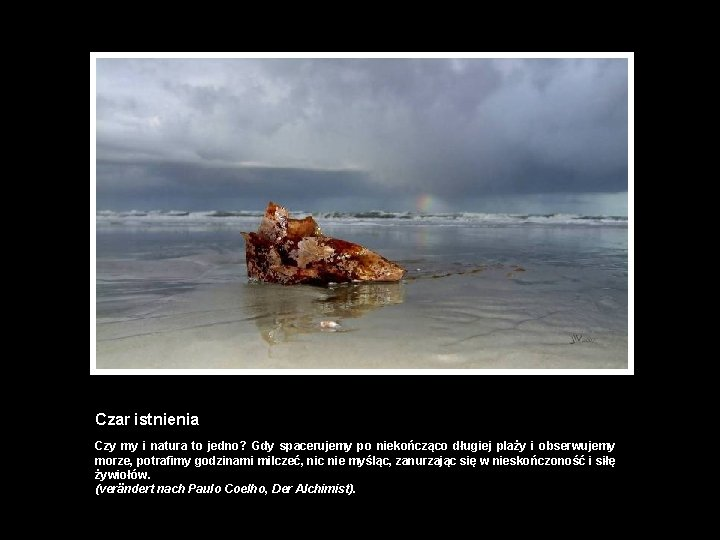 Czar istnienia Czy my i natura to jedno? Gdy spacerujemy po niekończąco długiej plaży
