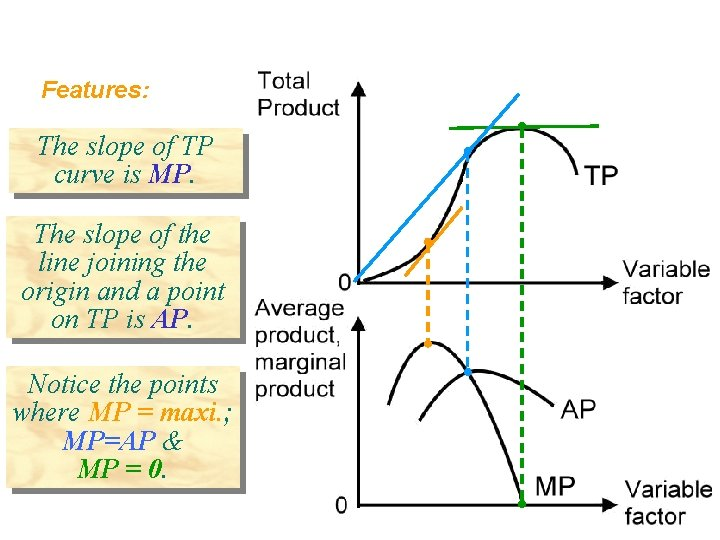 Features: The slope of TP curve is MP. The slope of the line joining