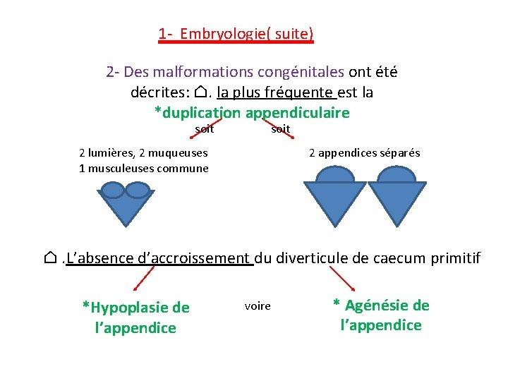 1 - Embryologie( suite) 2 - Des malformations congénitales ont été décrites: ⌂.