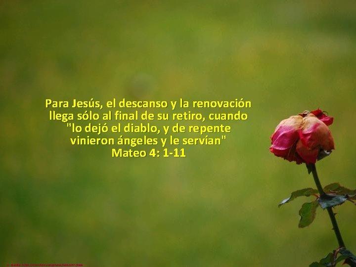 Para Jesús, el descanso y la renovación llega sólo al final de su retiro,