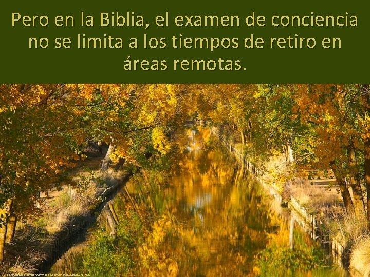 Pero en la Biblia, el examen de conciencia no se limita a los tiempos